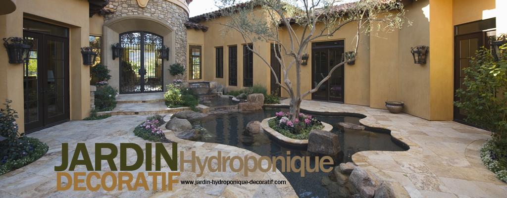 Jardin hydroponique decoratif